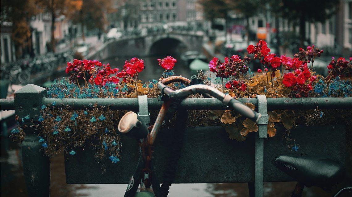 Waarom een tweedehands fiets een goede investering is voor iedere student